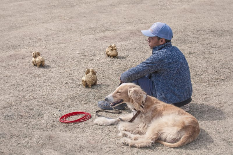 Boy and his Taigan (Тайган)  dog // Kyrgyzstan