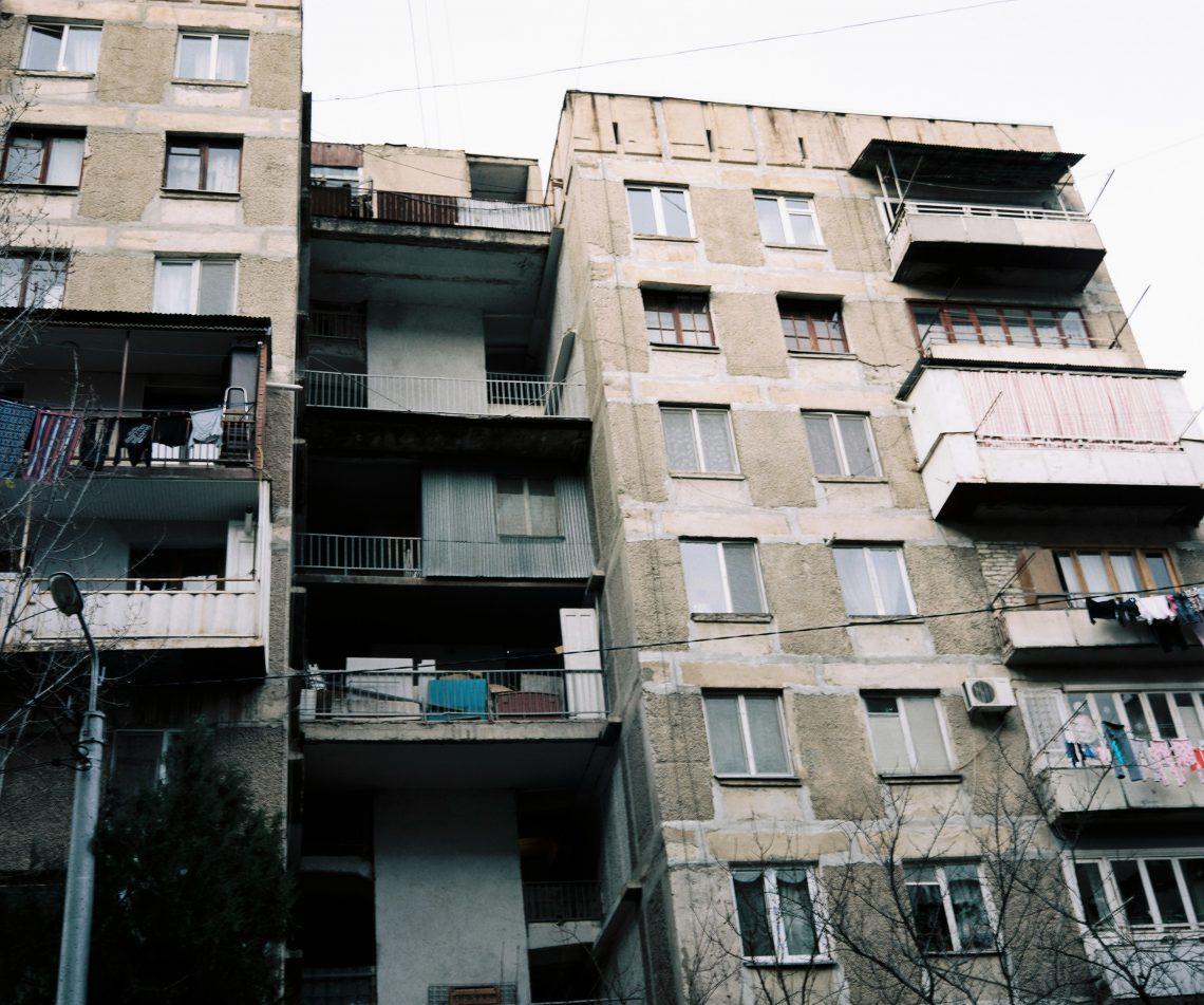 Urban grapes harverst // Tbilisi // Georgia